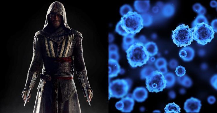 刺客教條是真的?科學家發現: 「細胞會記錄自身成長全部歷史」...這些記憶還能被重啟!